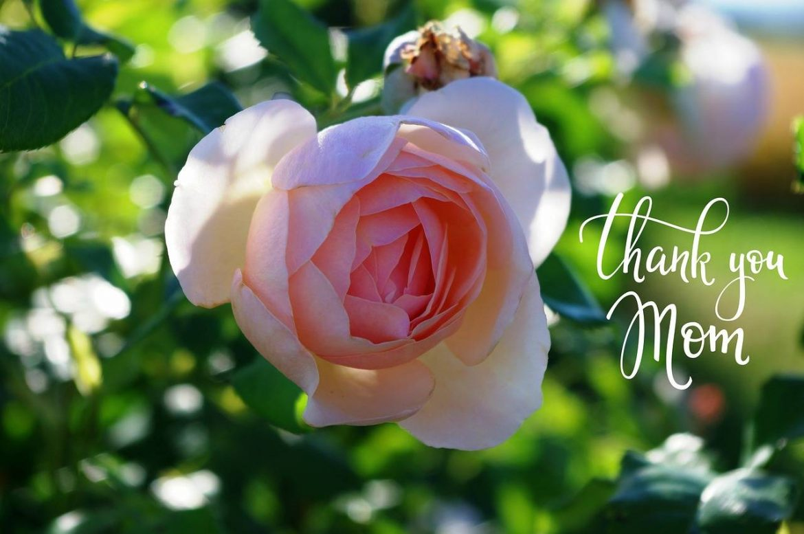 mothers-day-thank you mom